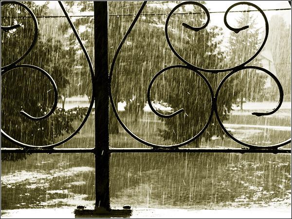Kisa - Page 4 Rain1