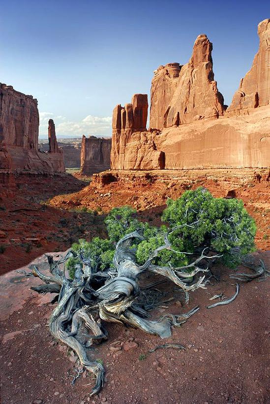 Следы древних цивилизаций: шлифованные горы с признаками машинной обработки Kamen_3807297_900