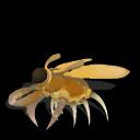 Pack de Insectos Zorg-1