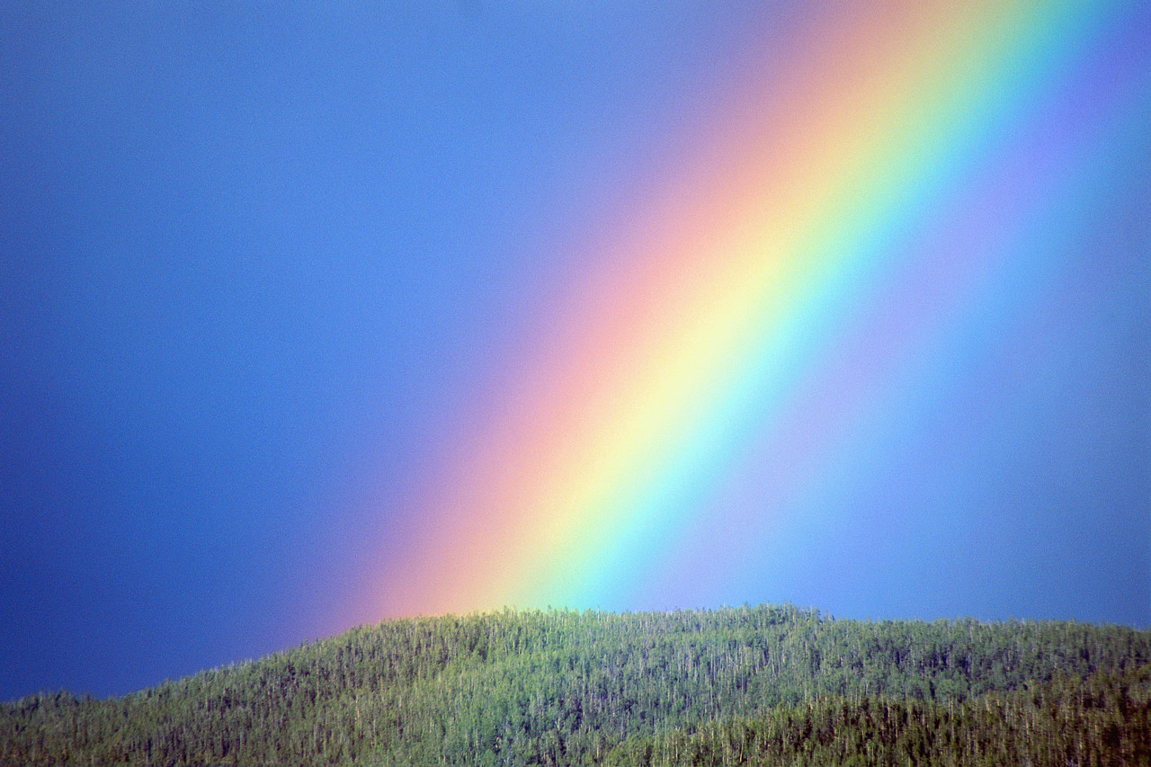 I - The thumb represents the inner essence of man! - Page 33 Rainbow1