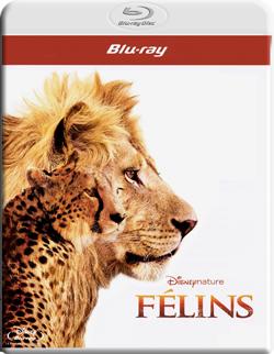 Les Blu ray de MDC  Filmotech_01442