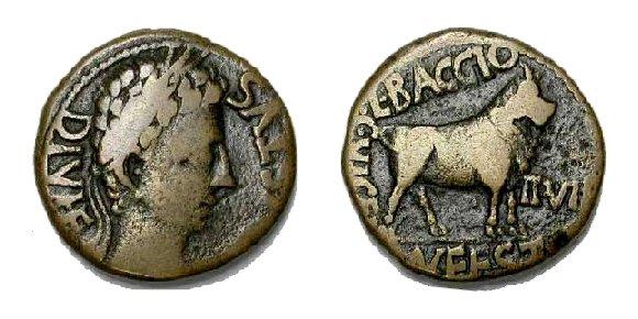 romana Celsa08