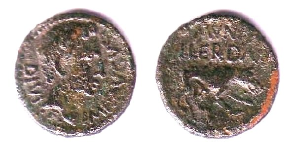 Bronze CERDA ou HERDA au loup Iltirta35