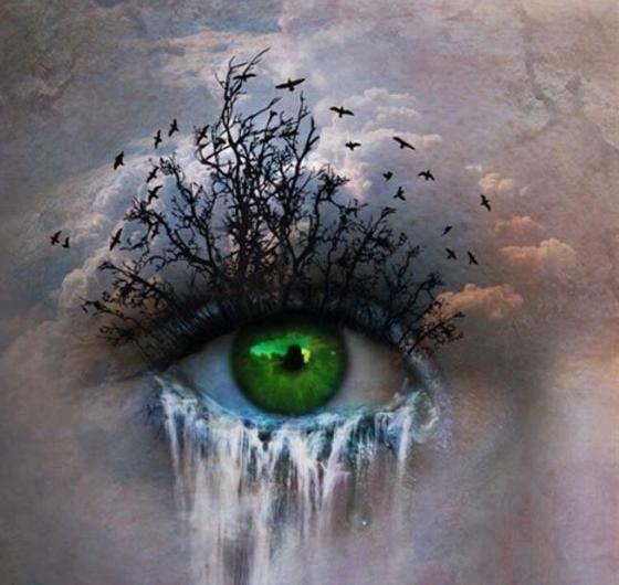 Dear Mr. President... Crying-eye