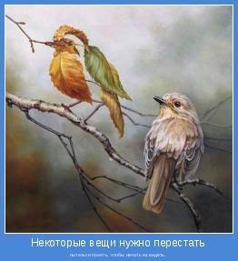 Философия в картинках - Страница 4 Motivator-57806