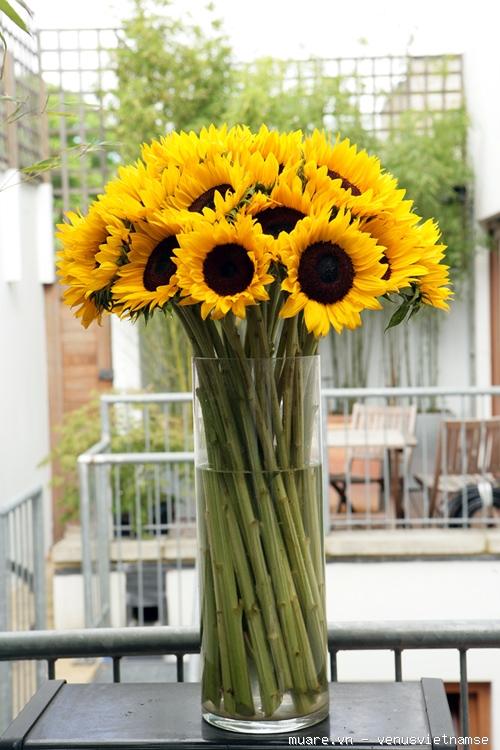 Dạy cắm hoa chuyên nghiệp,dạy cắm hoa nghệ thuật,dạy cắt tỉa của quả ở T.p Vinh Nghệ An 735212_ecc9146edc02be5741206a537577277c
