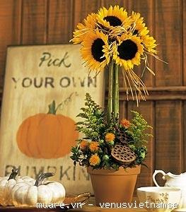 Dạy cắm hoa chuyên nghiệp,dạy cắm hoa nghệ thuật,dạy cắt tỉa của quả ở T.p Vinh Nghệ An 735221_e75633e947c1126f6db93950b6a964a1