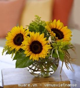 Dạy cắm hoa chuyên nghiệp,dạy cắm hoa nghệ thuật,dạy cắt tỉa của quả ở T.p Vinh Nghệ An 735234_fad7f1bf47ff214aa9da9f455bdeae07