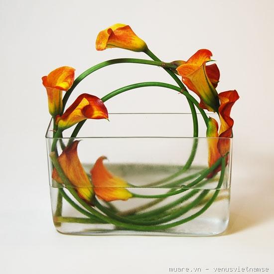 Dạy cắm hoa chuyên nghiệp,dạy cắm hoa nghệ thuật,dạy cắt tỉa của quả ở T.p Vinh Nghệ An 735235_11ecae2bf2c8fa6940f19f056f76d1cd
