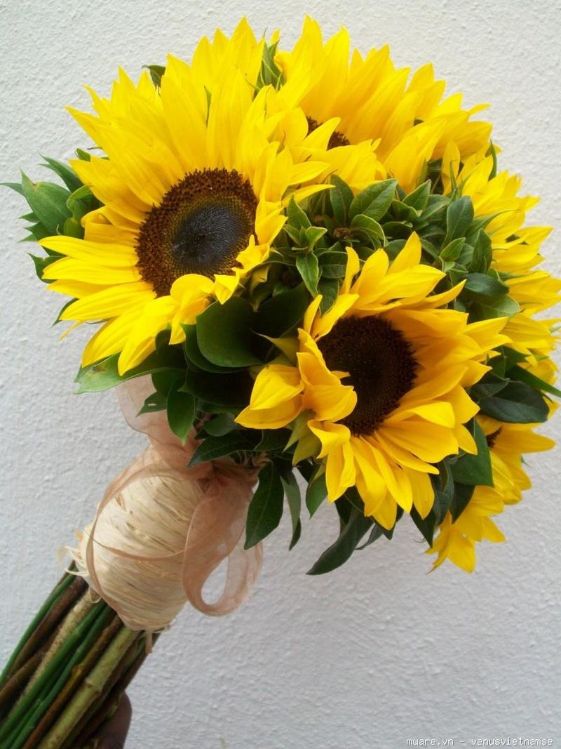 Dạy cắm hoa chuyên nghiệp,dạy cắm hoa nghệ thuật,dạy cắt tỉa của quả ở T.p Vinh Nghệ An 735230_447ef6be8d9162082cfe99d0da3cfb67