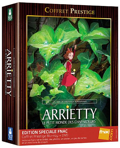 DVD Arrietty le petit monde des chapardeurs 8717418330620