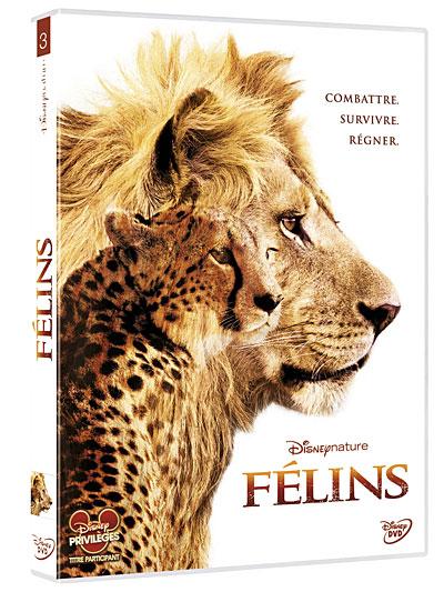 [BD + DVD] Félins (5 juin 2012) 8717418273880