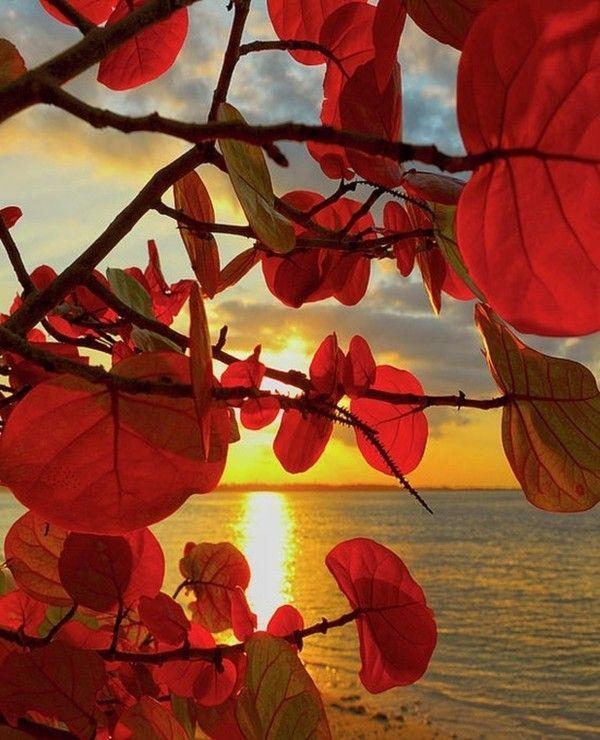 Images coucher de soleil 59cb81be