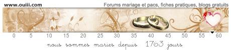 Mariage le 12 juillet 2014 : Il était une fois ... Une petite Manon en 2016 - Page 34 09923681jex