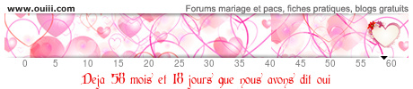 Mariage Noixdine et iXce - 29 Août 2015 - Page 2 48823693cwc