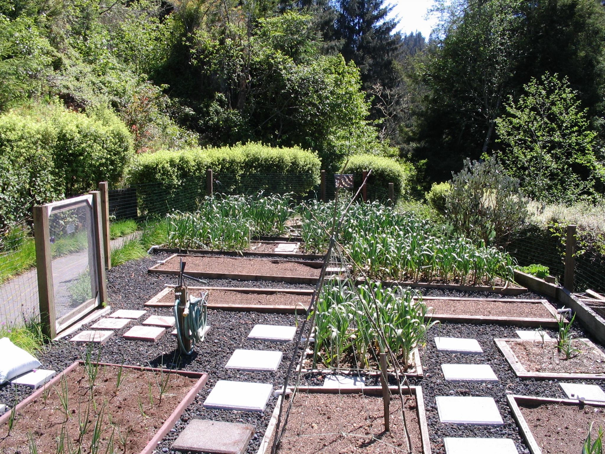 Vrtovi - Page 6 Garden-may-2010-007