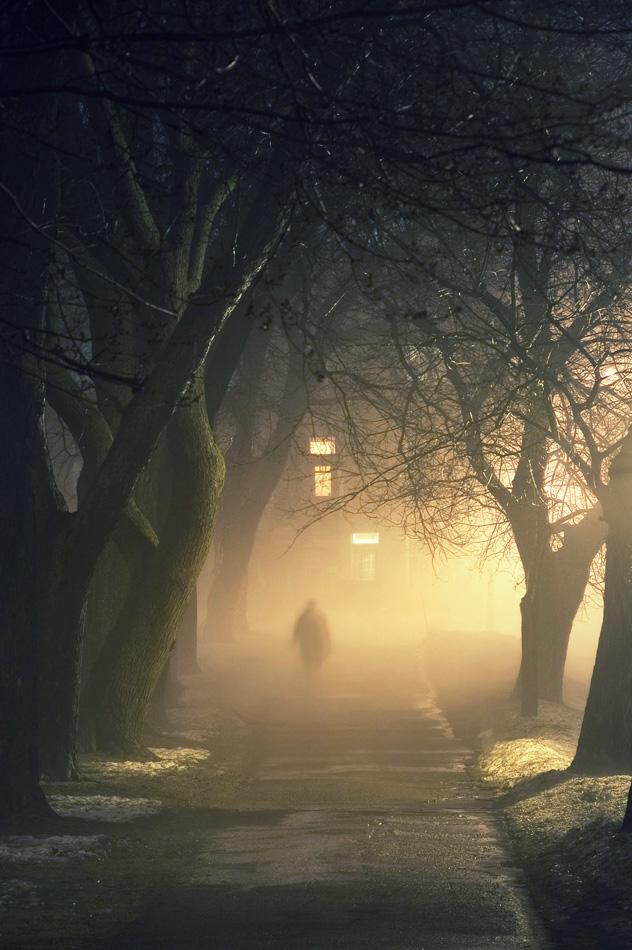 Za poeziju - Page 2 Fog