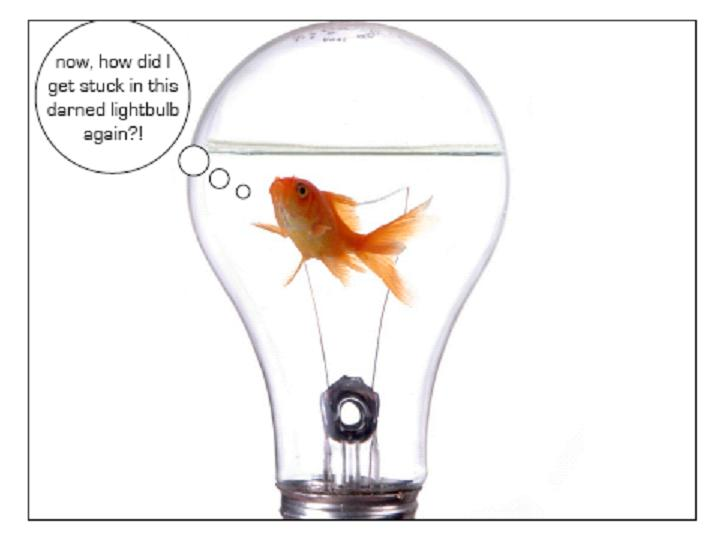 Come what MAY (2012)….. Fish_bulb