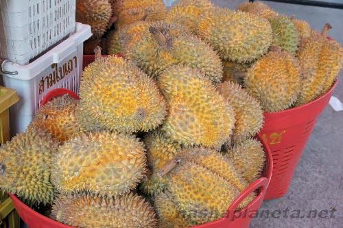 Экзотические фрукты ( фото, название, описание ). Durian