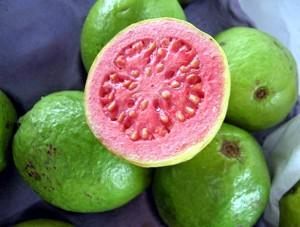 Экзотические фрукты ( фото, название, описание ). Gyajava