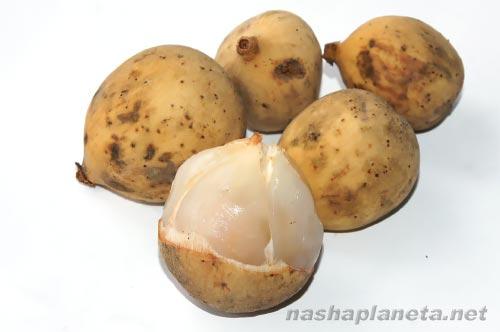 Экзотические фрукты ( фото, название, описание ). Longkong