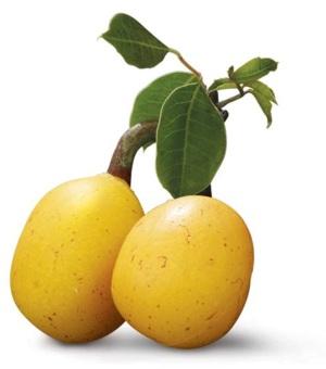 Экзотические фрукты ( фото, название, описание ). Marula