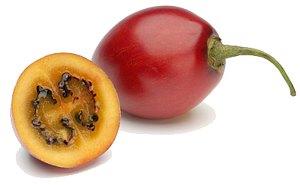 Экзотические фрукты ( фото, название, описание ). Tamarillo