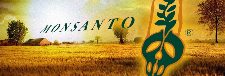 Huge: Monsanto Going to Trial for Crimes Against Humanity Monsanto_gmo_735_2501-735x250