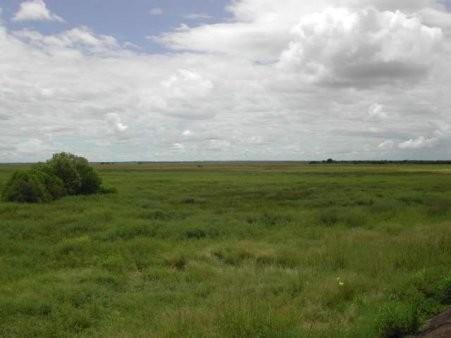 [CONCOURS n°2] Photographes en herbe, par ici ! Plaine_d_Australie
