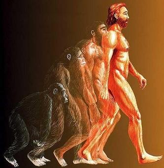 Эволюция  Cont_evolution_01