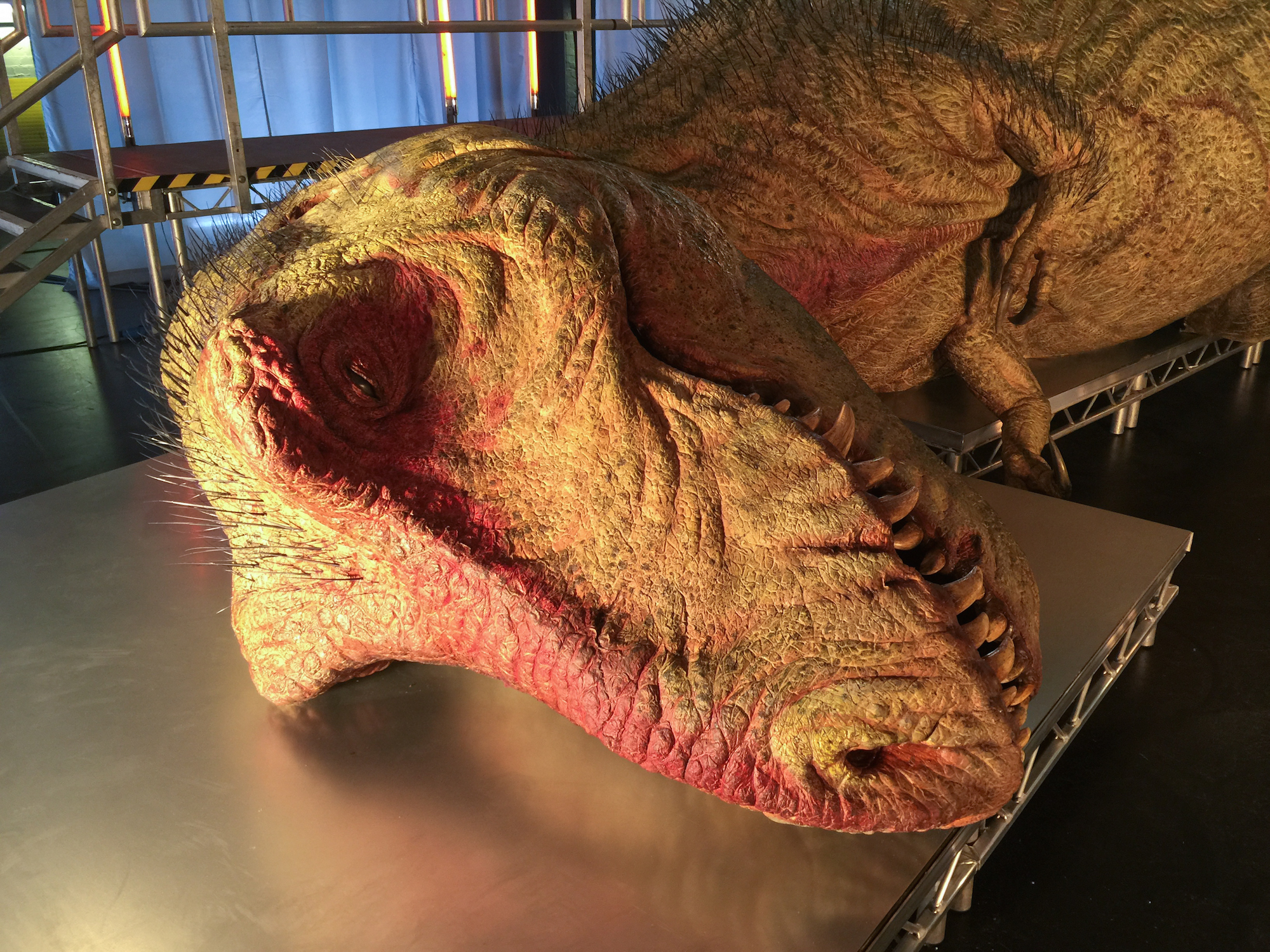 Debate: Did Tyrannosaurus Rex have Scales or Feathers? - Page 2 TrexAutopsy_1