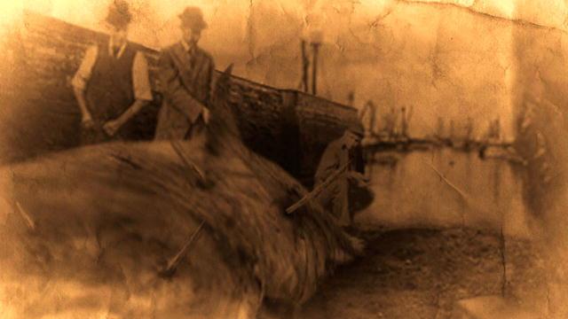 Sirènes Tragédie et Complot......... - Page 3 133779997619513668600501197_Spears
