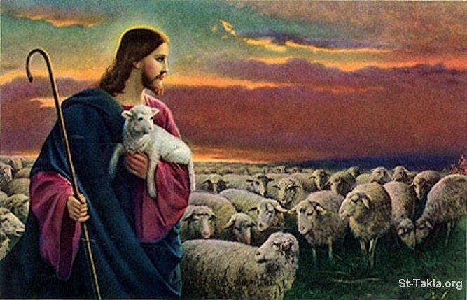 الناي الحزين.. لحن الافاق Www-st-takla-org___jesus-the-good-shepherd-102