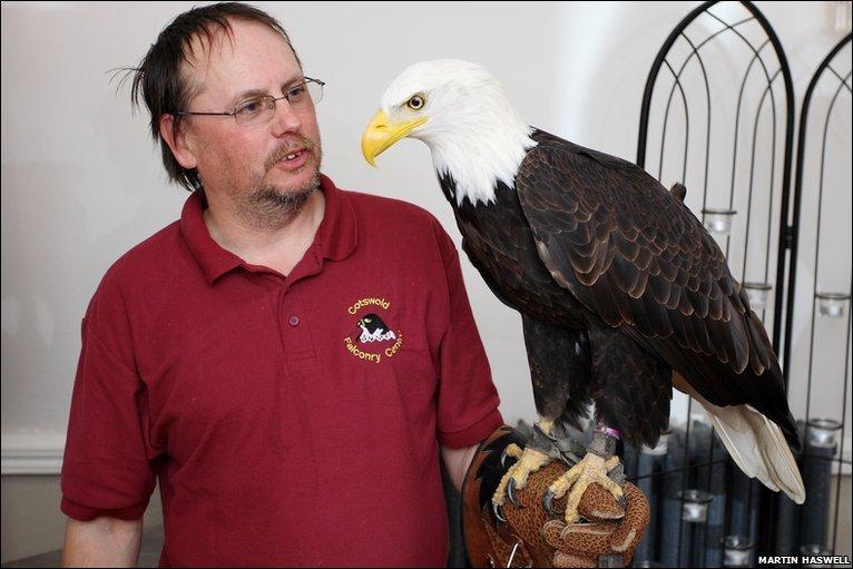 Comparação do tamanho de águias  com relação ao homem. _47928534_4b6a5c1a-75ec-4a1f-bee6-161bd7c4b31d