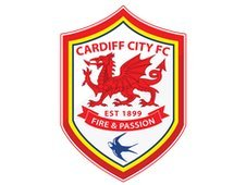 2013 - Championship Preview 2012-2013 _62093483_cardiff-city-crest_full-col