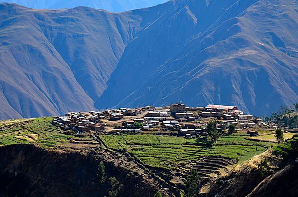 Peru - Page 4 Peru_chocos_news