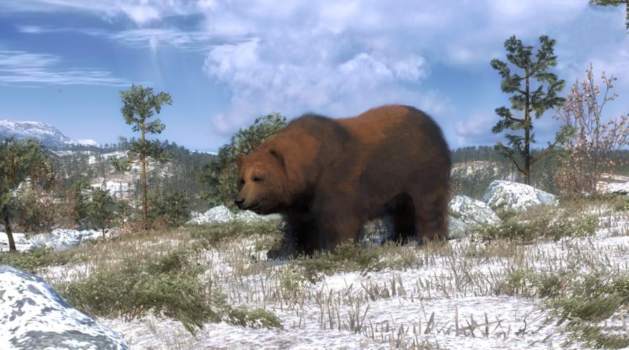 Actualización del estado 12/12/16 Brown_bear_new