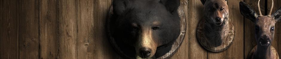 Introducción del nuevo sistema de Hunter Score Species_1