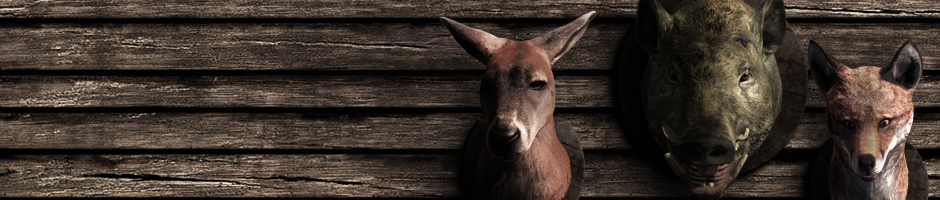 Introducción del nuevo sistema de Hunter Score Species_2