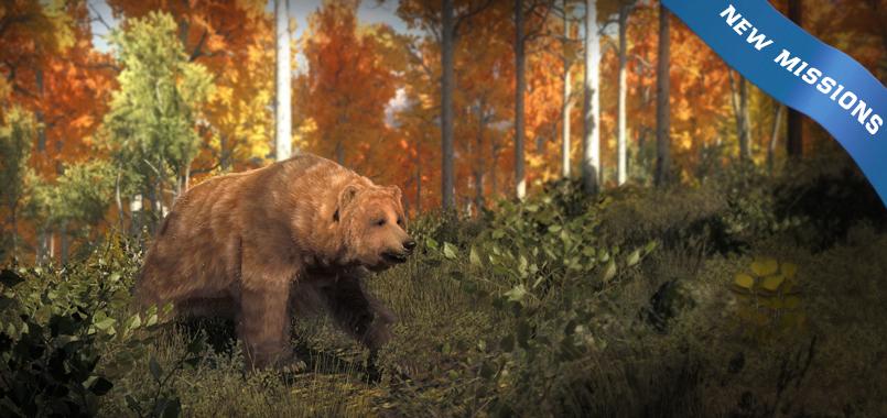 Actualización de estado 14/07/17 Splashscreen_grizzlybear_missions