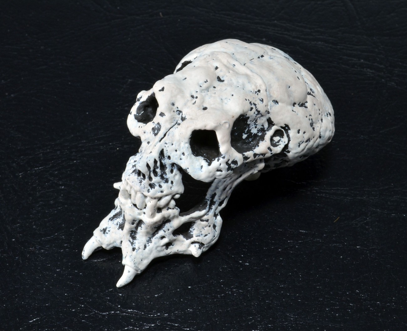 [NECA] [Tópico Oficial] PREDADORES - SDCC Exclusive: Dark Horse Comics - Ahab Predator - Página 20 Predator-Skull-Trophy-Pack-010