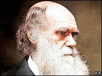 """""""Las razas biológicas nunca existieron"""" - Página 2 _42209092_darwin203b"""
