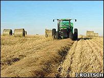 """وقود من العشب: """"يخفض الانبعاثات بـ94 في المائة"""" _44339799_bailing203roitsch"""