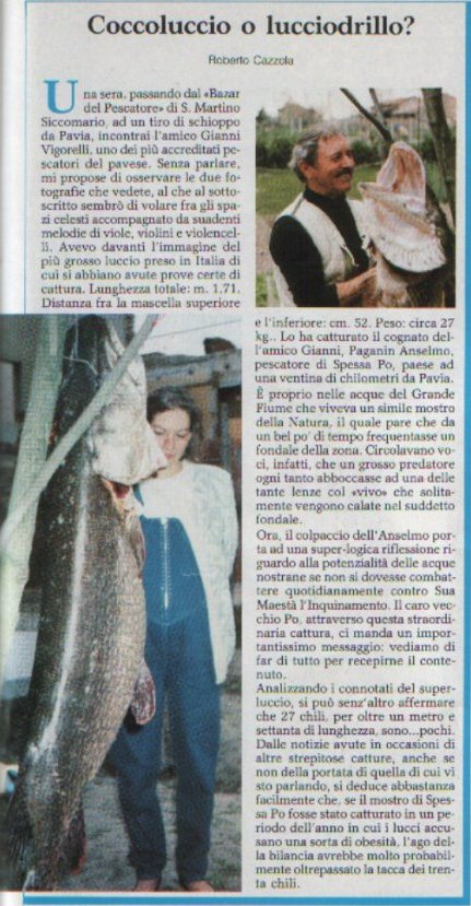 le grand pere des brochets 171cm-luccio-record-27-kg-per-171-cm-quotidiano-locale