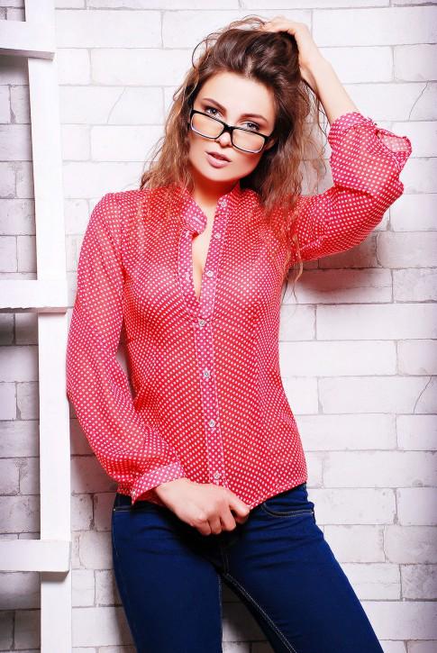 NIKO-Opt - Более 520 моделей женской одежды от производителя! опт от 3-х едениц! Rubashka-dr-kristy-rb-1007i