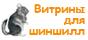 Шиншиллы в Магнитогорске - Главная 1