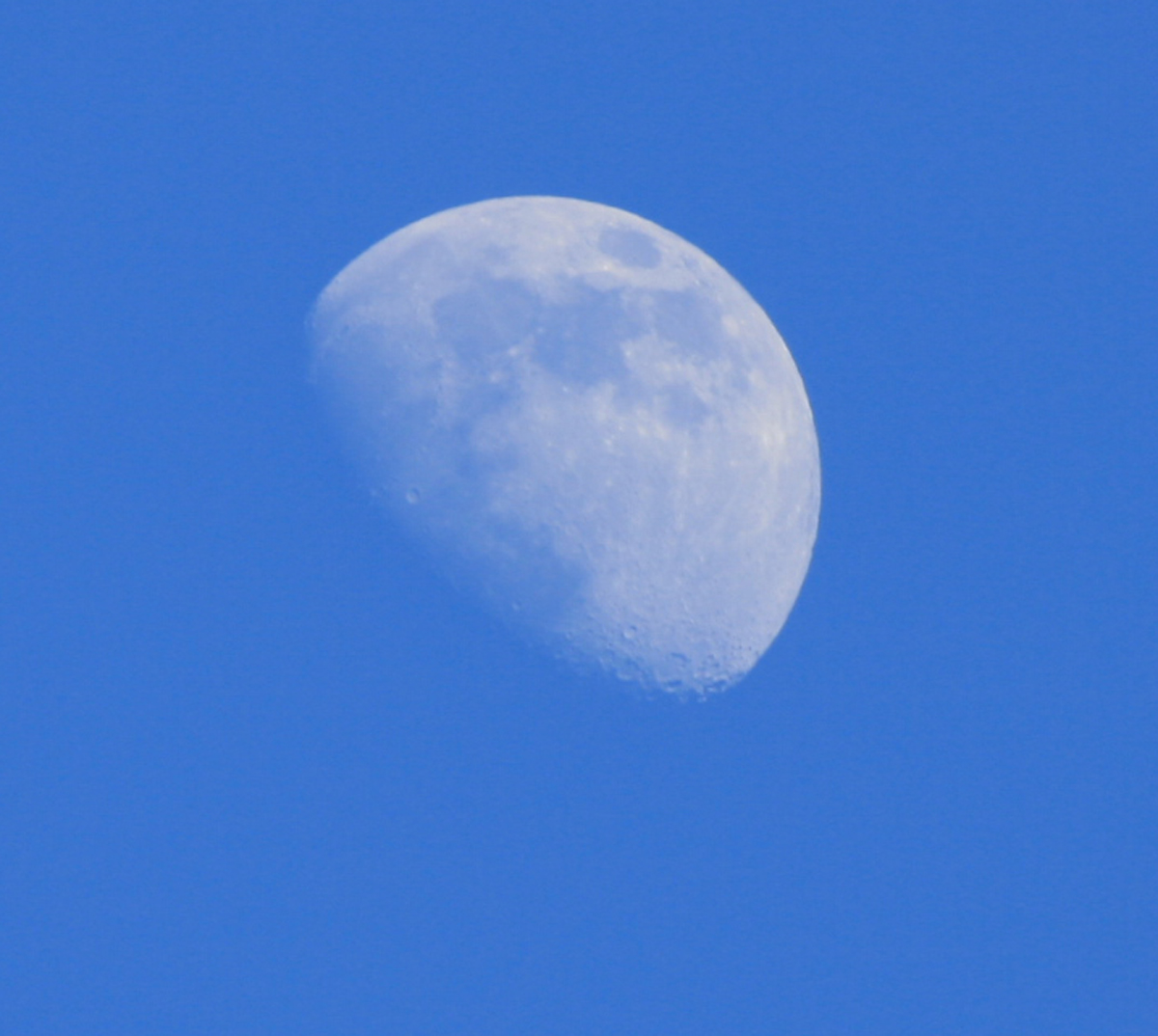The Flat Moon Over the Flat Earth Afternoon-moon