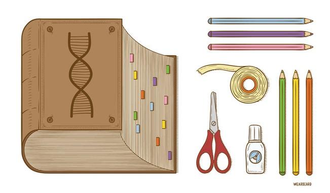 Ultimos Avances en Ciencia y Salud - Página 24 Img_37939