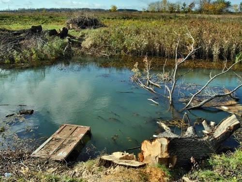 Течет река Вёрда..... а нам заботы нет. Или куда исчезли 25.16633 миллиона рублей. Vyorda%2002