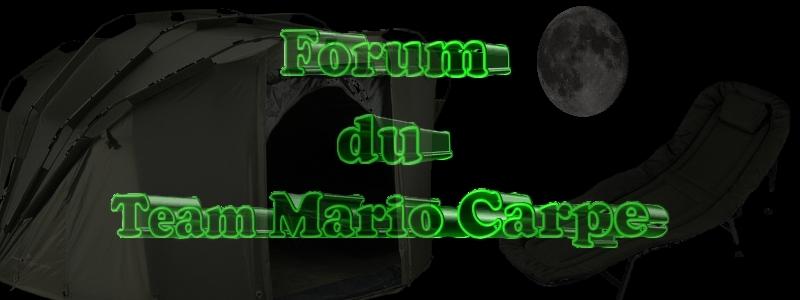 FORUM DU TEAM MARIO CARPE